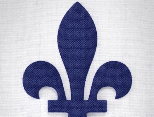 Étude de cas : le logo de la Fête nationale